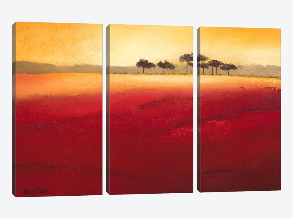 Tree Timberline IV by Hans Paus 3-piece Canvas Artwork