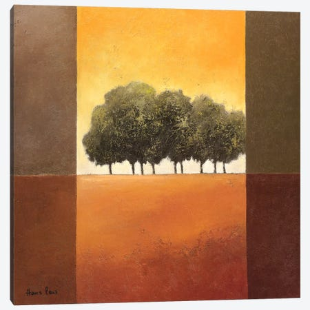 Trees III Canvas Print #HPA109} by Hans Paus Canvas Wall Art