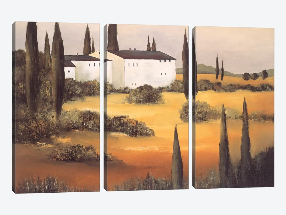 Twilight I by Hans Paus 3-piece Canvas Art