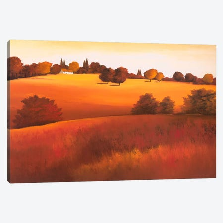 Untainted I Canvas Print #HPA120} by Hans Paus Canvas Artwork
