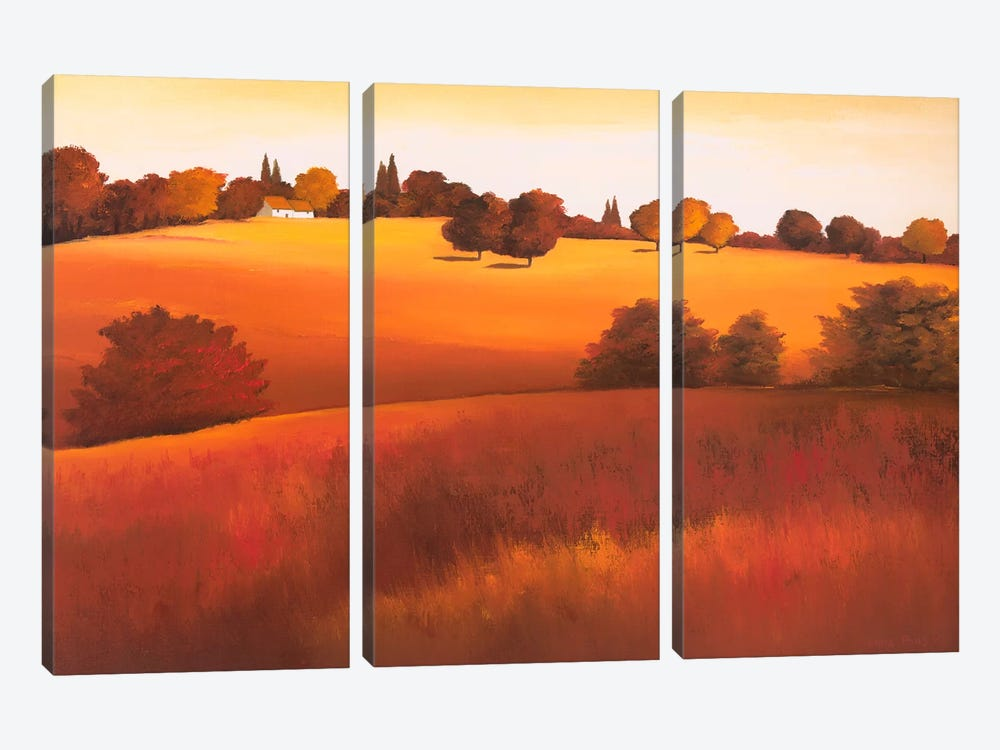 Untainted I by Hans Paus 3-piece Canvas Wall Art