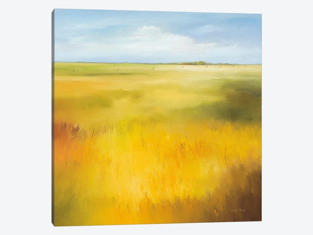 Yellow Field I by Hans Paus 1-piece Canvas Art