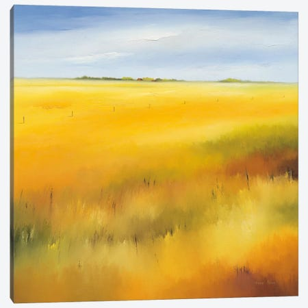 Yellow Field II Canvas Print #HPA132} by Hans Paus Art Print