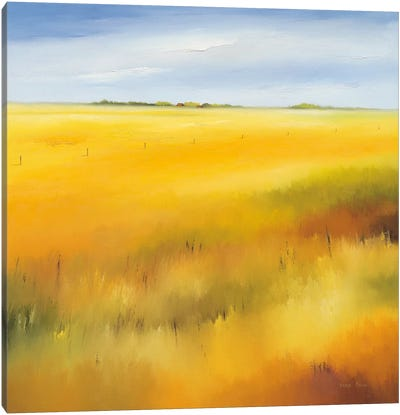 Yellow Field II Canvas Art Print