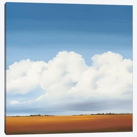 Clouds I Canvas Print #HPA17} by Hans Paus Canvas Art
