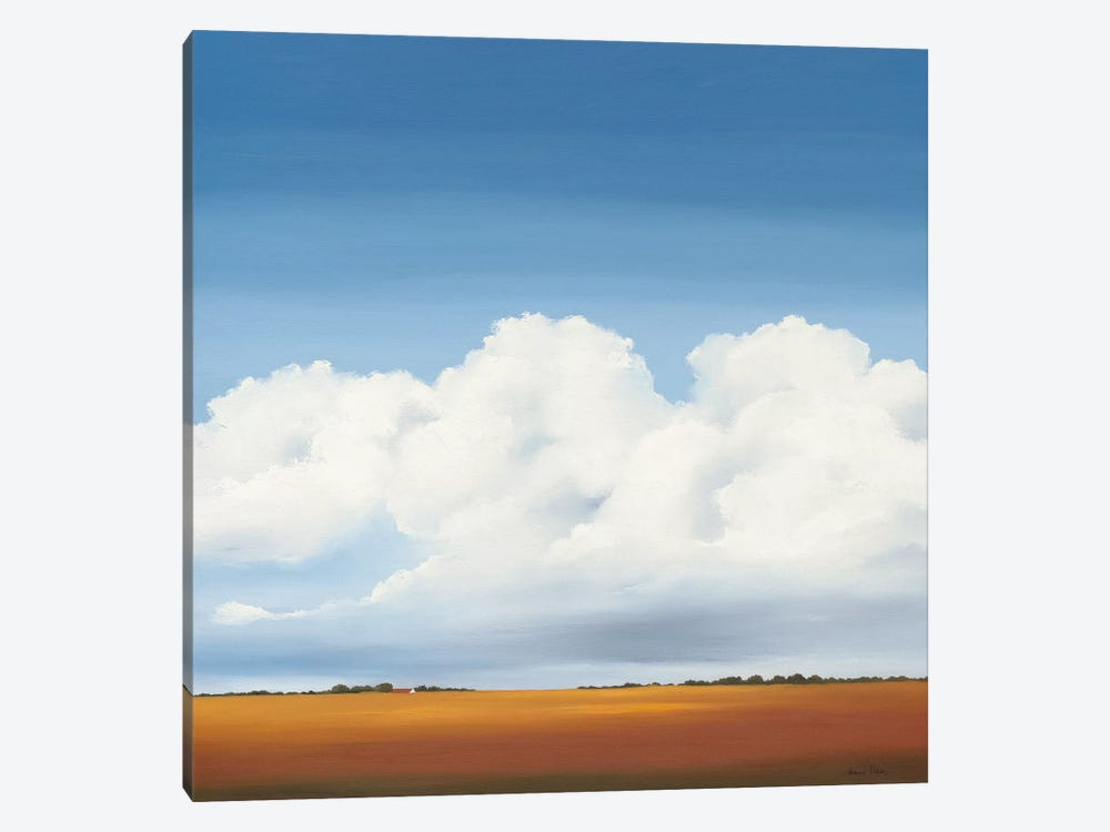 Clouds I by Hans Paus 1-piece Canvas Print