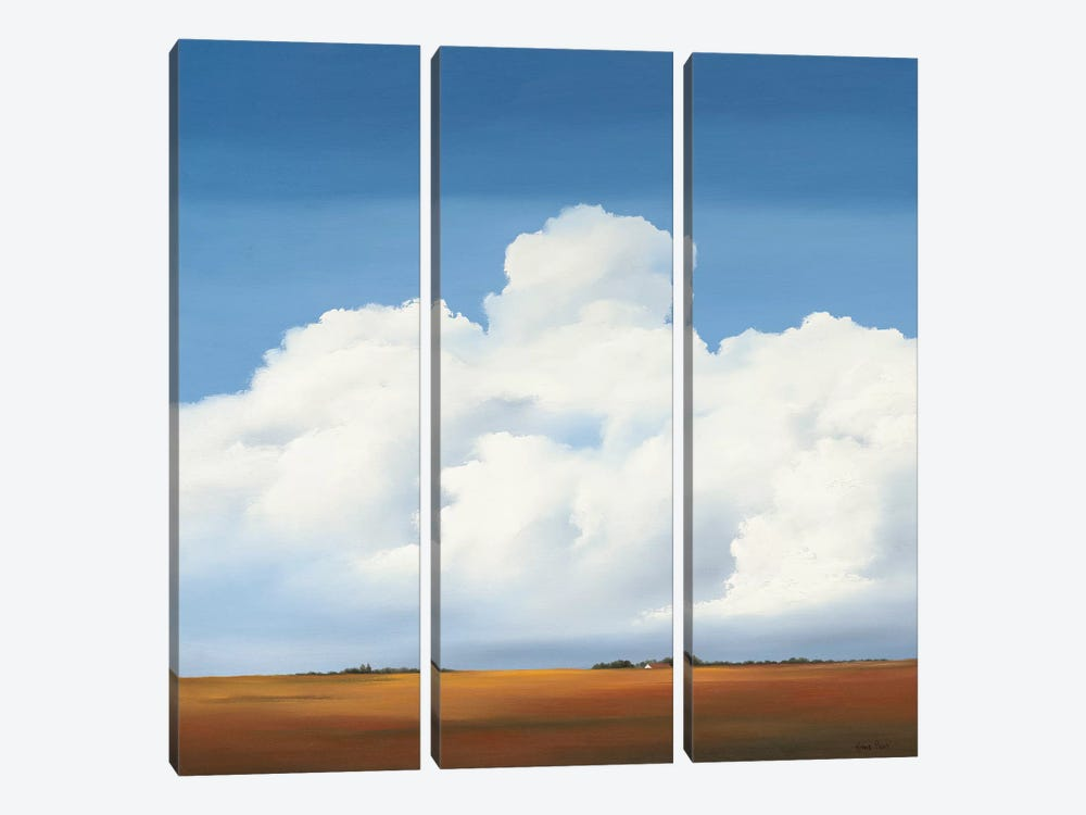 Clouds II by Hans Paus 3-piece Canvas Wall Art