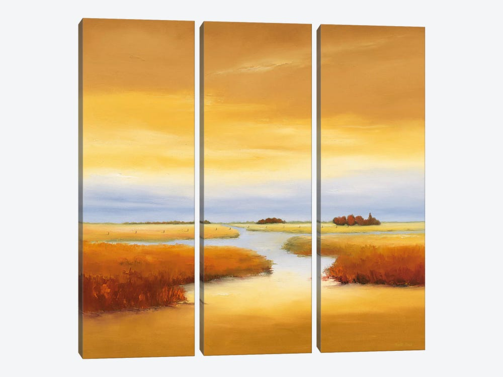 Down The River III by Hans Paus 3-piece Canvas Print