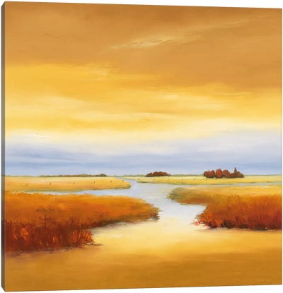 Down The River III Canvas Art Print