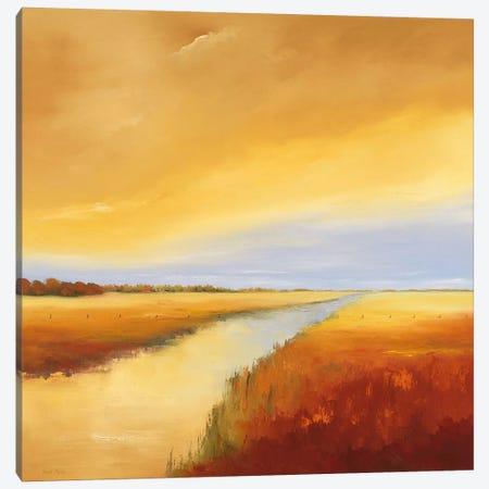 Down The River IV Canvas Print #HPA32} by Hans Paus Art Print