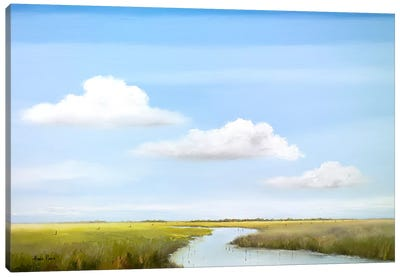 Down The River VI Canvas Art Print