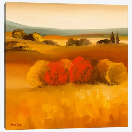 Green Tree Canvas Print #HPA46} by Hans Paus Canvas Art Print