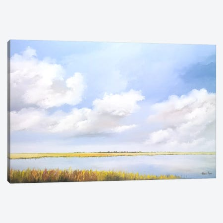 Lake Canvas Print #HPA56} by Hans Paus Canvas Art