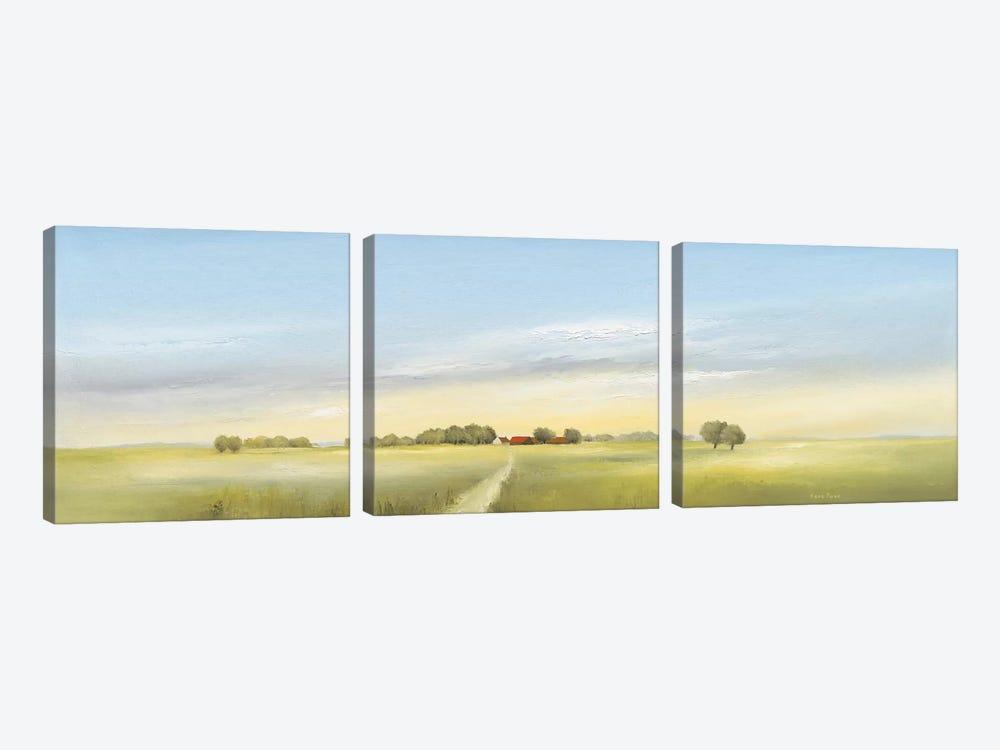 Lowlands II by Hans Paus 3-piece Canvas Art