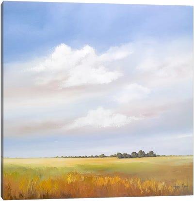 Lowlands IV Canvas Art Print