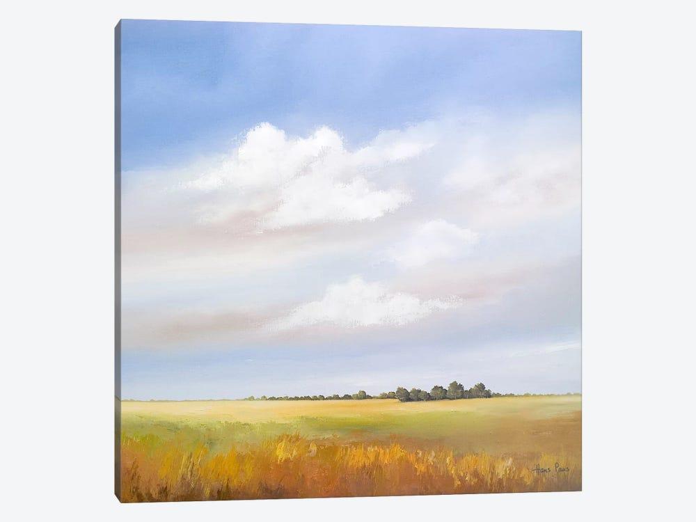 Lowlands IV by Hans Paus 1-piece Canvas Print