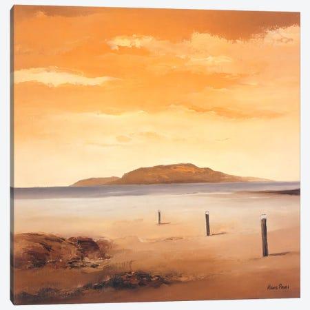 Quiet Sands II Canvas Print #HPA70} by Hans Paus Art Print