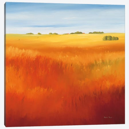 Red Field I Canvas Print #HPA71} by Hans Paus Canvas Print