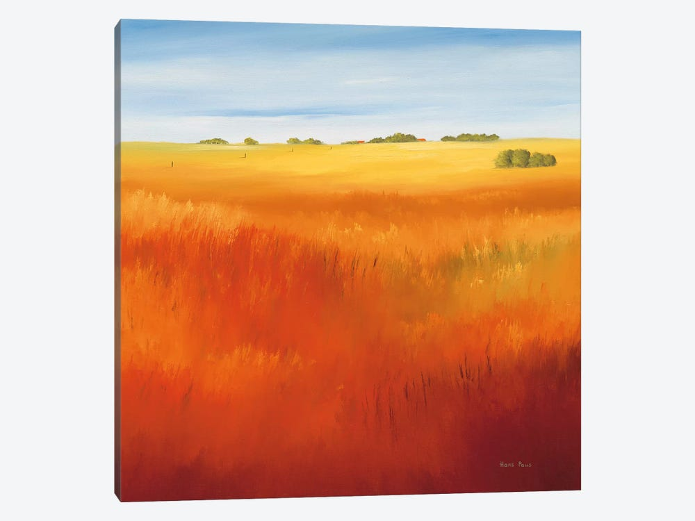 Red Field I by Hans Paus 1-piece Art Print