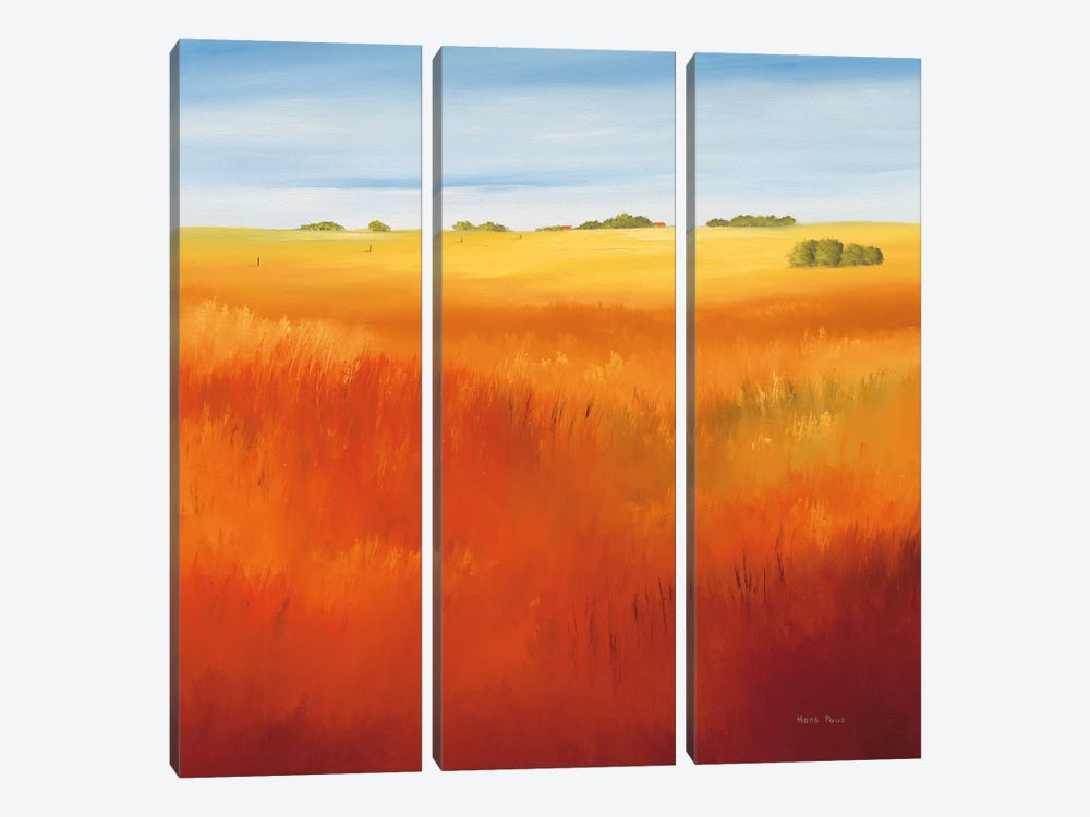 Red Field I by Hans Paus 3-piece Canvas Art Print