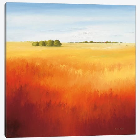 Red Field II Canvas Print #HPA72} by Hans Paus Art Print