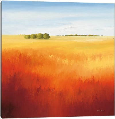 Red Field II Canvas Art Print
