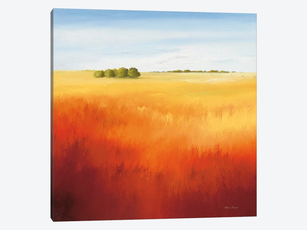 Red Field II by Hans Paus 1-piece Canvas Artwork