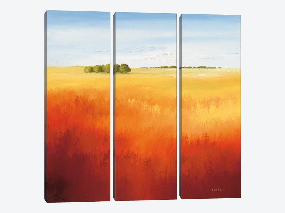 Red Field II by Hans Paus 3-piece Canvas Wall Art