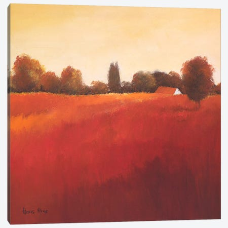 Scarlet Landscape III Canvas Print #HPA74} by Hans Paus Canvas Art