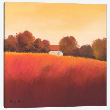 Scarlet Landscape IV Canvas Print #HPA75} by Hans Paus Canvas Art