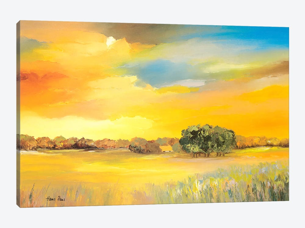 Serene I by Hans Paus 1-piece Canvas Artwork