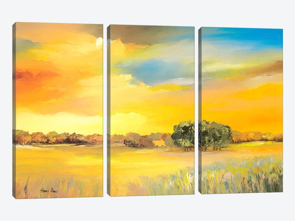 Serene I by Hans Paus 3-piece Canvas Art