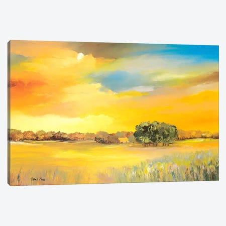 Serene I Canvas Print #HPA78} by Hans Paus Canvas Art Print