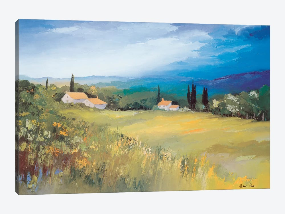Somewhere In The South II by Hans Paus 1-piece Canvas Art