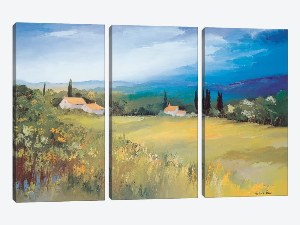 Somewhere In The South II by Hans Paus 3-piece Canvas Artwork