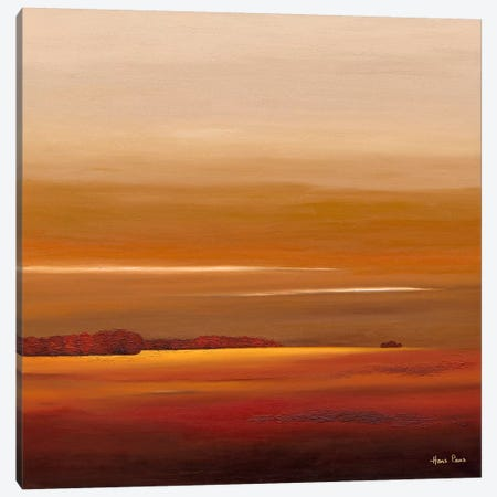 Sundown IV Canvas Print #HPA91} by Hans Paus Art Print