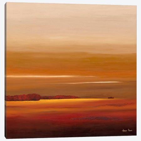 Sundown IV Canvas Print #HPA91} by Hans Paus Art Print