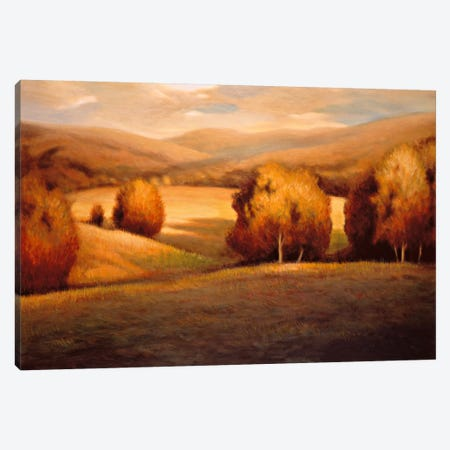 Backcountry I Canvas Print #HPI1} by Helen Pierson Canvas Print