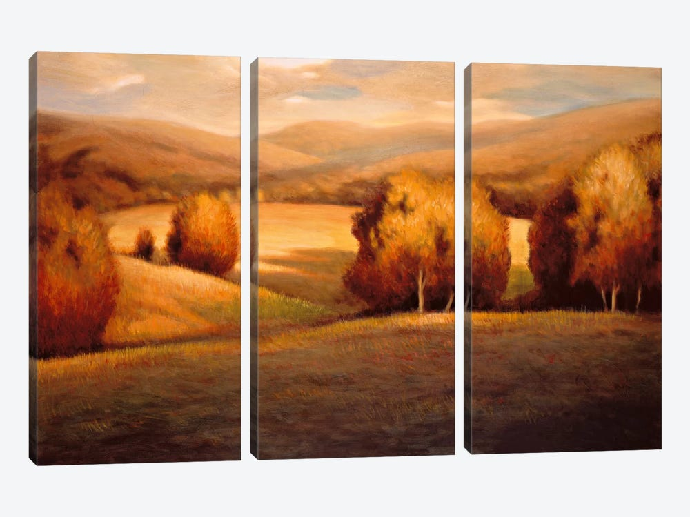 Backcountry I by Helen Pierson 3-piece Art Print