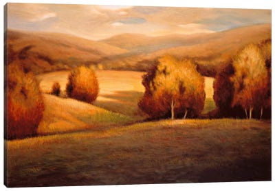 Backcountry I Canvas Art Print