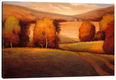 Backcountry II Canvas Art Print