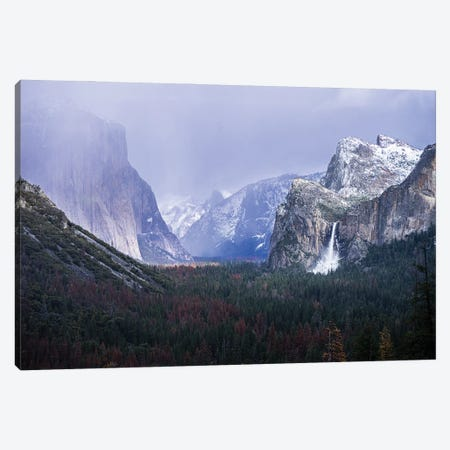 Yosemite Winter Canvas Print #HRB16} by Heather Roberson Canvas Artwork