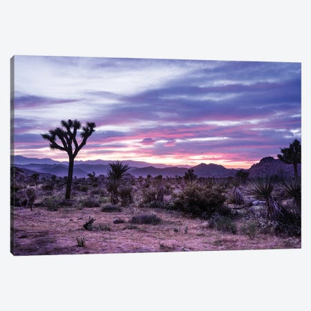 Sunset Spectacle Canvas Print #HRB25} by Heather Roberson Canvas Art Print