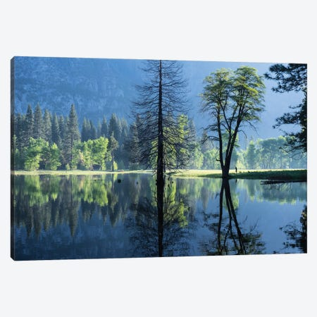 Morning Observer Canvas Print #HRB37} by Heather Roberson Canvas Artwork