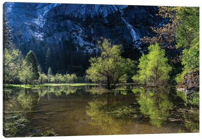 Mirror Lake Canvas Art Print