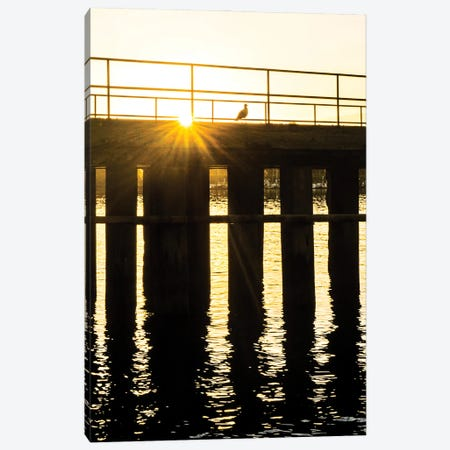 Piering Over Canvas Print #HRB41} by Heather Roberson Canvas Wall Art