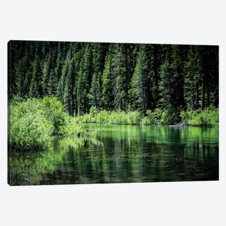 Along The Truckee River Canvas Print #HRB45} by Heather Roberson Canvas Print