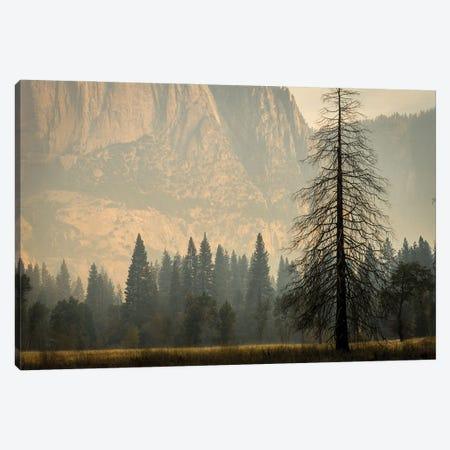 Smokey Haze In Yosemite Canvas Print #HRB47} by Heather Roberson Canvas Print