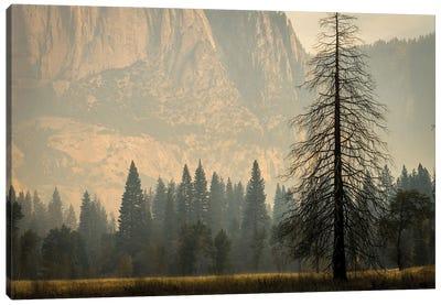 Smokey Haze In Yosemite Canvas Art Print