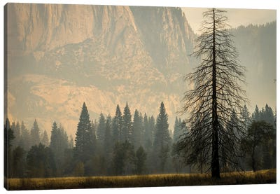 Smokey Haze In Yosemite Canvas Art Print